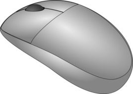 gray computer mouse on a white background