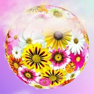 flower ball on a soft purple background