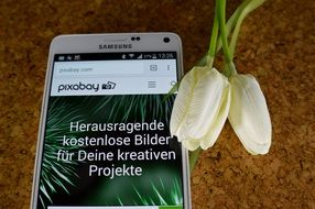 "Mobile phone ""samsung"" against a background of white tulips"