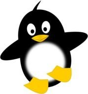 Beautiful and cute black and white penguin clipart