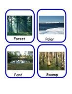 Different Animal Habitats clipart