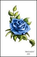 Clip art of blue Rose Tattoo Design