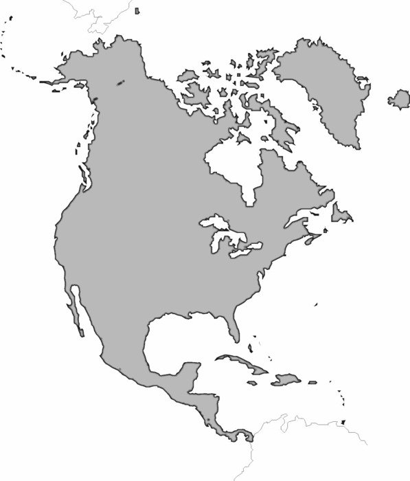 painted gray map of America