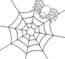 spider on a web as a graphic illustration