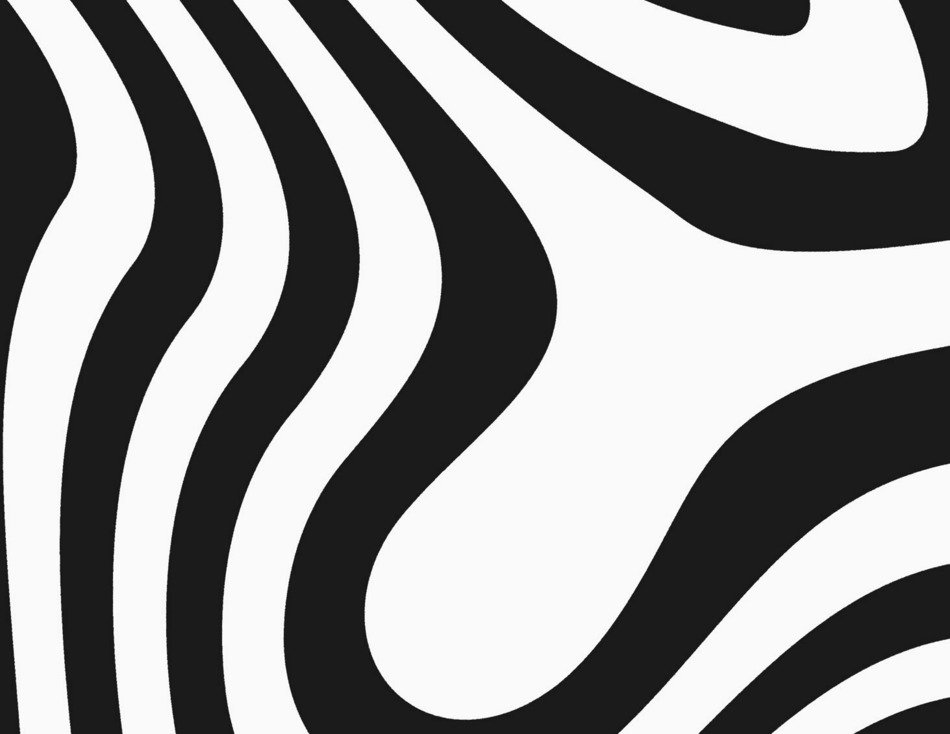 Zebra Print drawing
