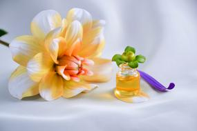 Oil and flower, Spa, Aromatherapy