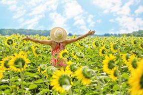 girl in a straw hat on a field of sunflowers under the summer sun