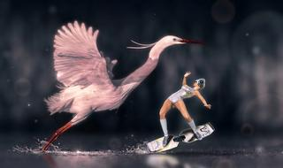 pink heron and surfing woman