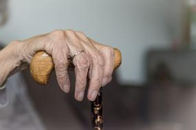 photo of an old woman's hand