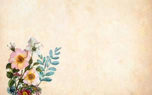 vintage background with wild rose flowers