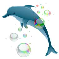 dolphin and soap bubbles, drawing