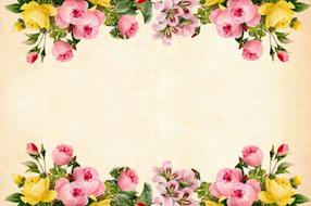 yellow and pink roses, borders at vintage background