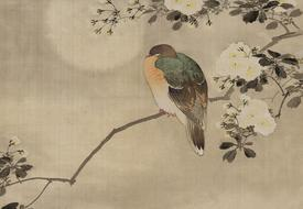 vintage japanese bird drawing