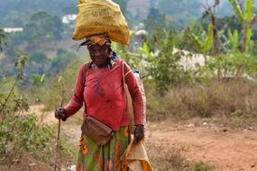 mature african Woman with load on head walking with stick, cameroun