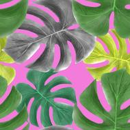 leaves of tropical plants, colorful seamless pattern