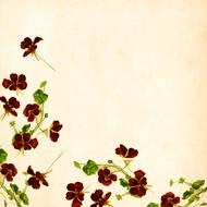 flower background vintage