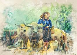 young asian woman with cattle walking on wooden bridge, drawing