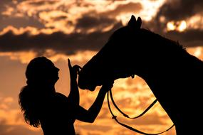 Silhouette Woman and Horse