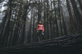 photo of a girl standing on a log in the forest