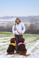 woman with two Bordeaux Dogs on snowy field