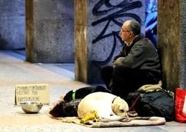 Man On The Street Homeless and dog