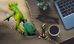 ceramic frog with luggage and home office