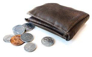 Wallet and Czech Coins