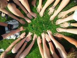 hands of a group of children on a green lawn