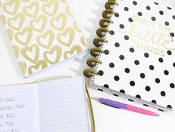 stylish notebooks