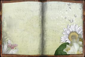 painted flowers and butterflies on the pages of the notebook