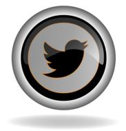 twitter icon on button, render