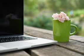 Flower pink Laptop