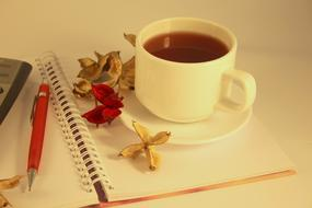 Tea Cup Drink and red pen dry flowers