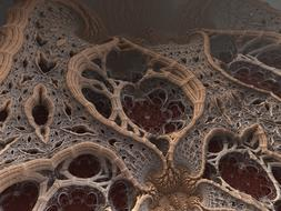 fractal, 3d render, brown organic shapes