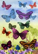 butterfly painting art graphic drawing