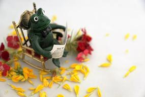 toy Frog Reads Newspaper