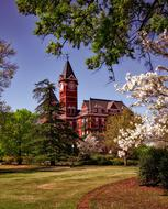 Hall Auburn University