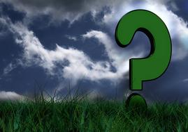 meadow grass green and question mark