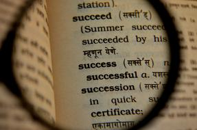 Success Dictionary Magnifier text