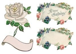 banner flowers rose drawing