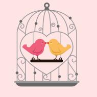 love birds beautiful drawing