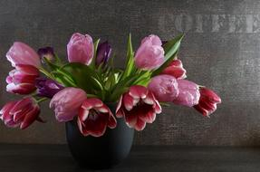 pot with tulips