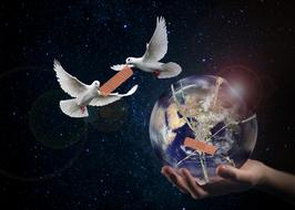 Harmony World Peace Dove