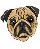 pug, cute dog face, drawing