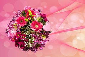 romantic bouquet of gerberas on a pink background