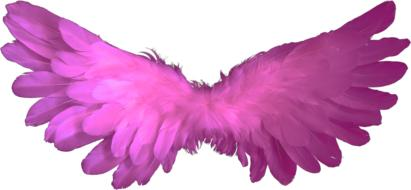 Angel Wings Feather pink drawing