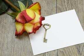 Key and rose on blank paper