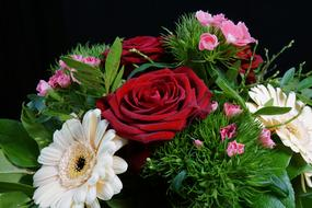 Rose Red and white gerbera Flowers