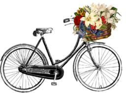 bicycle with flower drawing