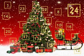 Advent Calendar Gifts tree